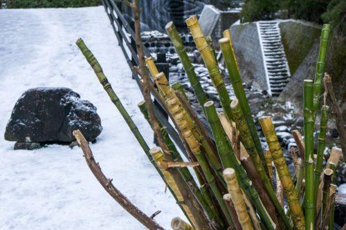 Palos de bambú cerca de la cascada Shiraino.