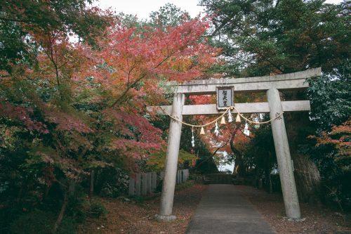 El monte Mino de Osaka, Japon.