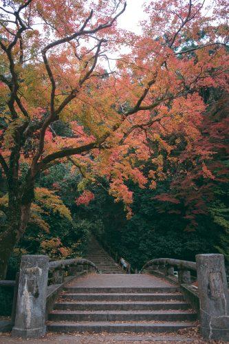 La naturaleza entre el camino en el monte Mino de Osaka, Japón.