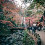 El monte Mino de Osaka – Follaje de otoño ¡Pruébalo!