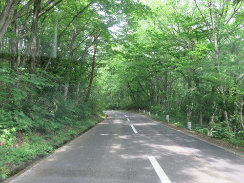 Muchos caminos vacíos para ir con bicicleta cerca de Tazawako en Akita, región de Tohoku, Japón.