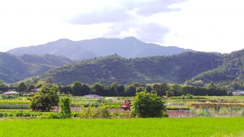 Montagne et campagne à Kyoto