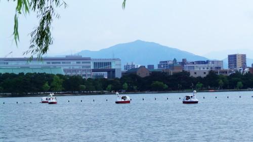 Parc Ohori à visiter à Fukuoka