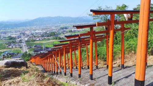 Top 10 Kyūshū : les torii de la ville d'Ukiha