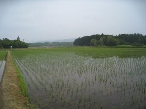 Sado (Sadogashima), sixième plus grande île du Japon.