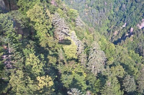 Vue du haut de la montagne Asahidake, parc Daizetsuzan, Hokkaido, Japon.