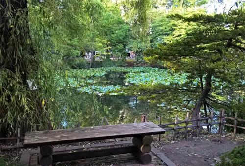 Jardin de l'ancien bureau gouvernemental d'Hokkaido, Sapporo, Japon.