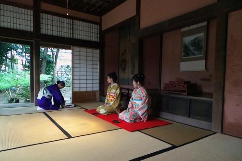 tea ceremony in an old samurai town, Izumi city , Kagoshima