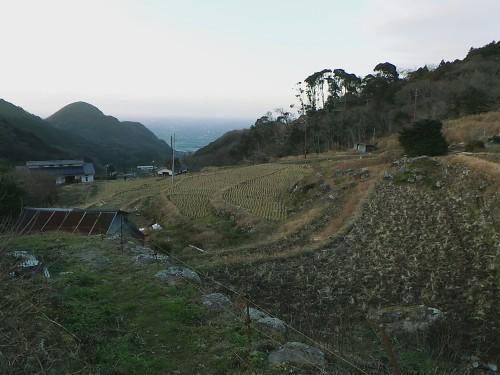 The night started to fall in Matsuzaki town, Shizuoka prefecture.