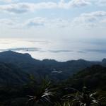 Ogasawara : 5 choses incontournables à faire à Chichijima