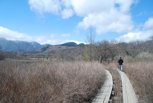 La nature à Nikko : Le chemin de randonnée Senjo ga hara