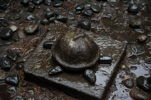 détail de tortue au sanctuaire Toshogu à Nikko