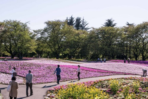 Le jardin Tobu Treasure Garden à Tatebayashi dans la préfecture de Gunma