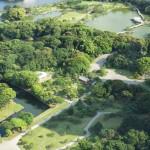 Top 8 des jardins japonais à voir dans Tokyo