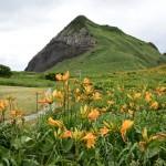 L'île de Sado : à la découverte des plus beaux paysages naturels