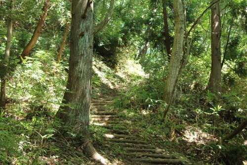 Le sentier de randonnée avec les marches en bois pour monter au mont Aoba à Wakasa Takahama