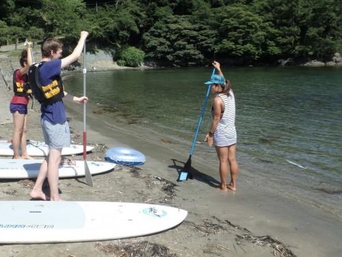 Paddle : Apprendre les principes de base!