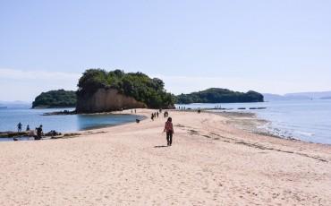 La route des anges sur l'île de Shodoshima dans la préfecture de Kagawa au Japon