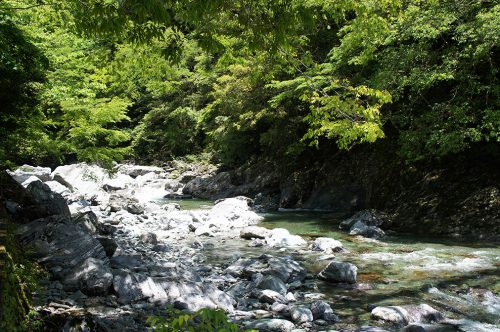 La vallée de Yodo où coule la rivière Niyodogawa dans la préfecture de Kochi, Japon
