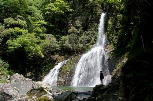 Cascade dans la vallée de Yodo où coule la rivière Niyodogawa dans la préfecture de Kochi, Japon