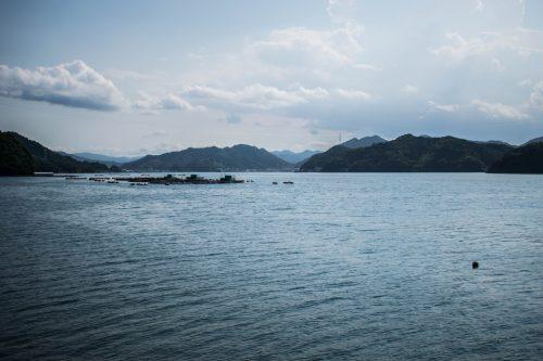 Point de vue sur les reliefs de l'île d'Ohnyujima, préfecture d'Oita, Japon