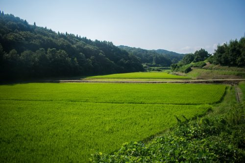 The Japanese countryside near the city of Usuki, Oita Prefecture, Japan