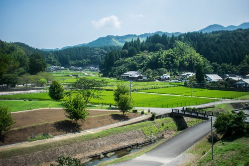 Point de vue depuis la colline aux Bouddhas de pierre à Usuki, préfecture d'Oita, Japon