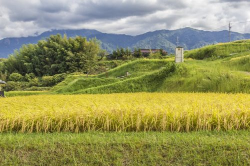 Rice paddies and mountains along the Nakasendō, Gifu Prefecture, Japan