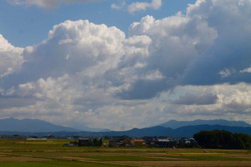 Les vastes rizières de la ville de Murakami, Préfecture de Niigata, Japon
