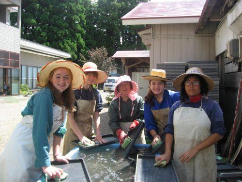 Participation aux activités du quotidien lors d'un séjour à la ferme à Semboku, Akita, Japon