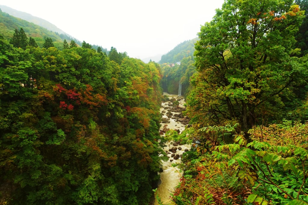 Première vue sur les gorges d' Oyasukyo.