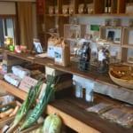 Les Délices de Kyushu : où acheter des spécialités bio et locales à Kumamoto ?