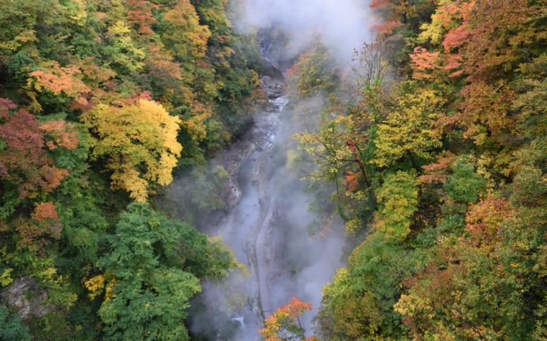 Couleurs d'automne et nuages de vapeur sur les gorges d' Oyasukyo
