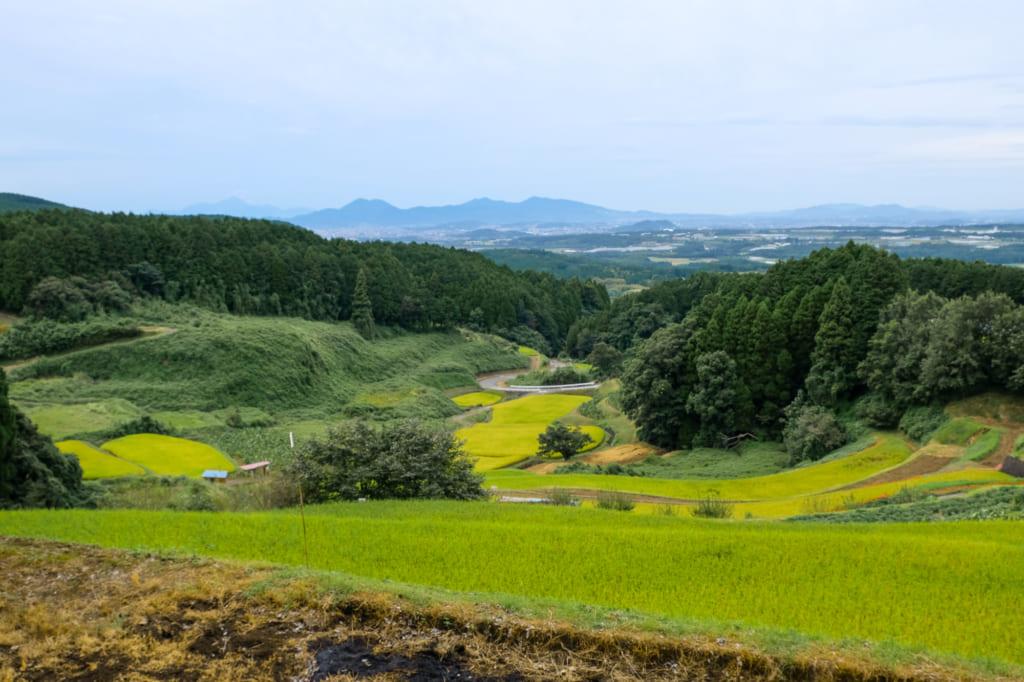 Les rizières en terrasse au centre de somptueux paysages, à proximité des chutes de shiraito