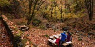 Japonais faisant un pique nique au Mont Mitake