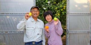 séjour à la ferme sur une île rurale au Japon