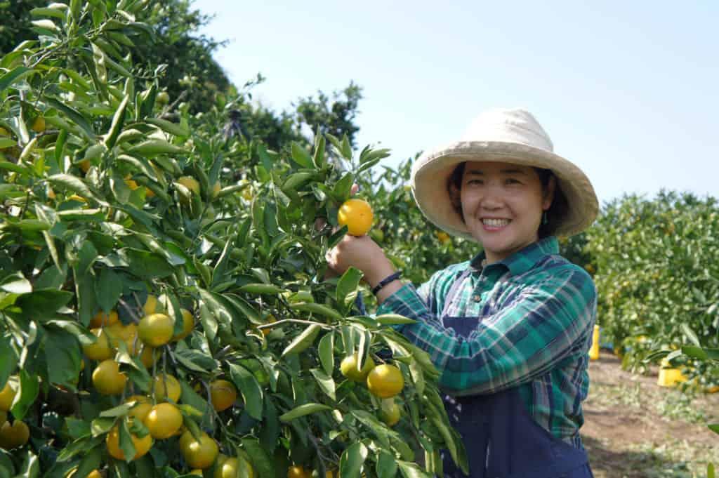 Agricoltrice in posa con un albero carico di frutti