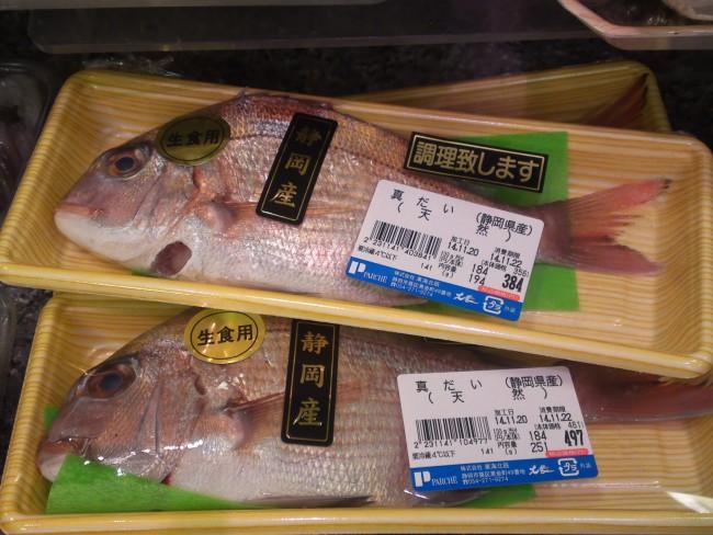 fish,fresh fish,madai,