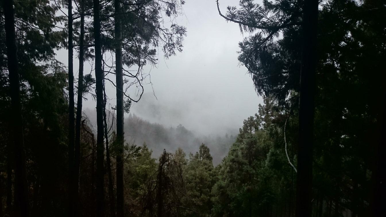 Hiking Mount Kongo, Osaka