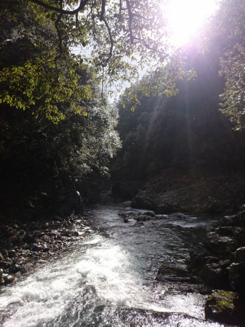 Hiking Arashiyama, ourdoor stream