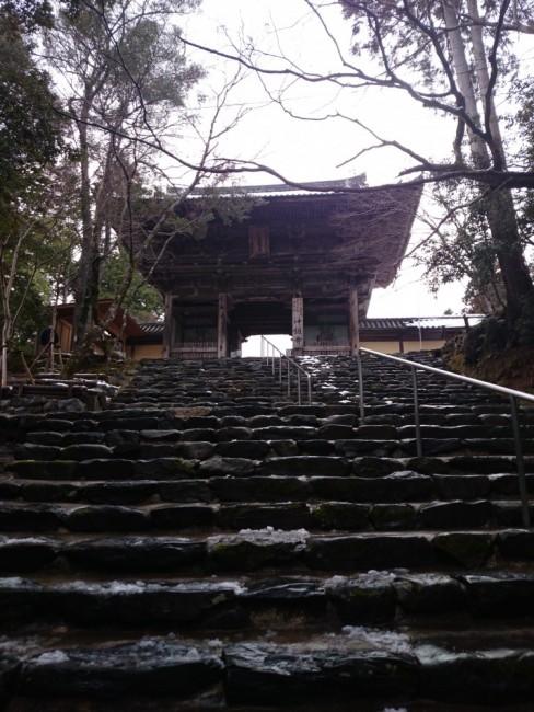 Hiking Arashiyama and nisoin temple