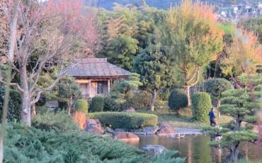 minamata,nature,park,garden