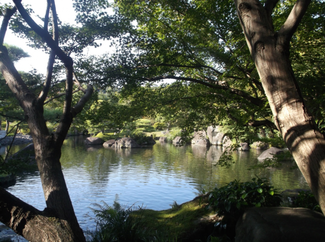 In this garden,you will enjoy feeling peaceful and calm atmosphere