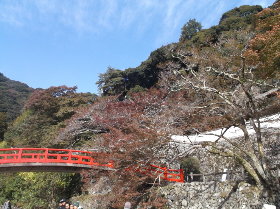After autumn in Japan,severe winter will arrive soon and almost all of leaves will have fallen from the trees