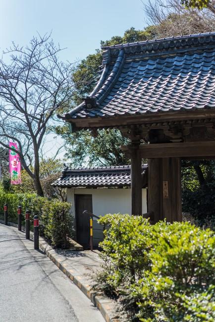 Soba Restaurant in Kamakura: Rai Tei
