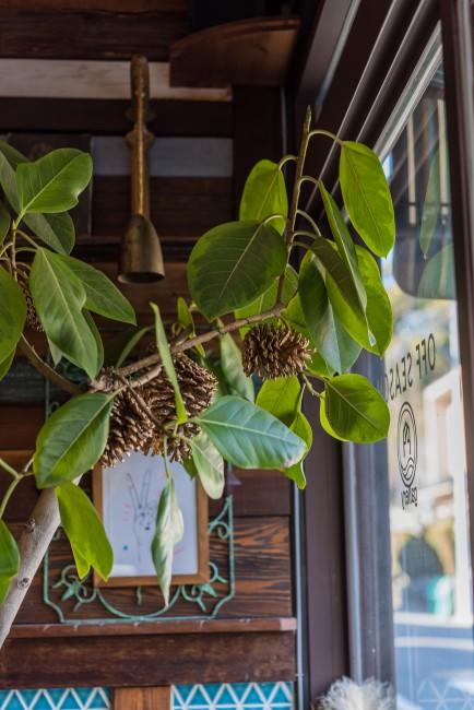 Kamakura Art Cafe: Halenova