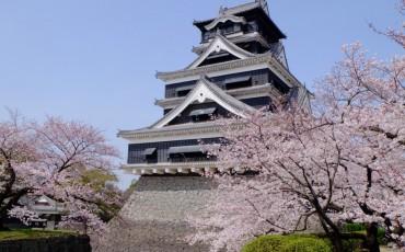 Kumamoto,Castle,Feudal,Edo,Kyushu,Samurai,Fortress