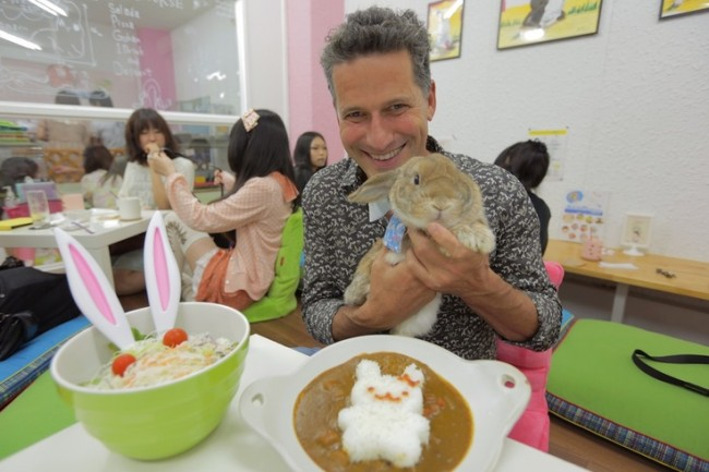 Gradually new types of animal cafe appear in Japanese society as you see rabbit cafe in this photo