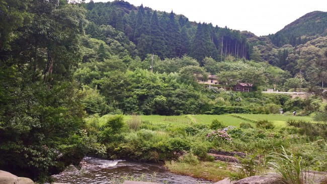 River near Chigonotaki waterfall with lots of nature in the distance in Kagoshima.