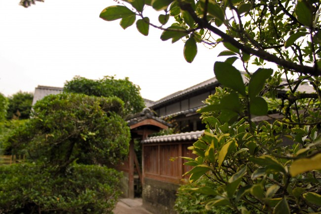 Greenery before a house at the heritage samurai village of Chiran.